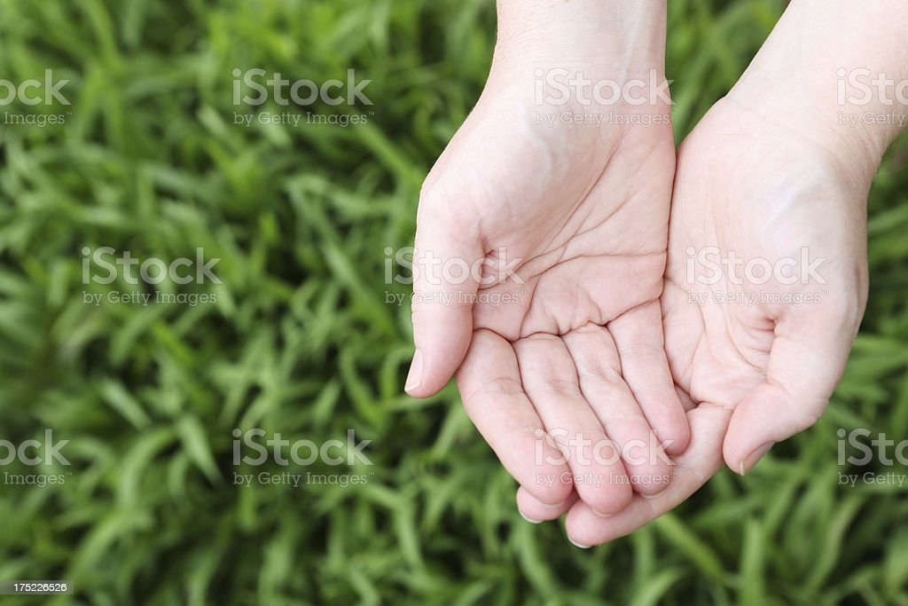 Giving Hands royalty-free stock photo