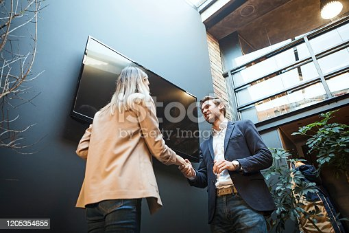 649403294 istock photo Giving presentation to colleague in meeting room at creative office 1205354655