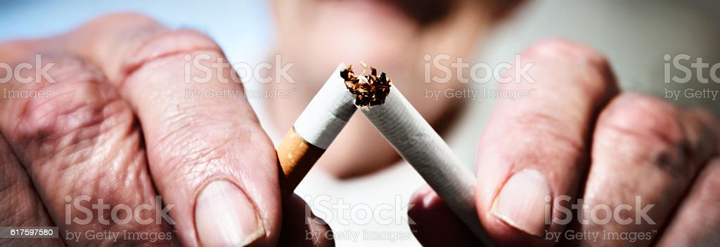 Giving up smoking: wrinkled hands break last cigarette stock photo