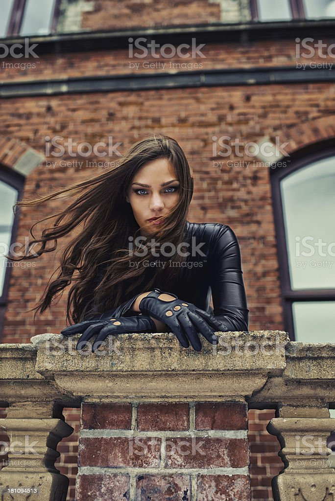 Giving you a piercing gaze stock photo