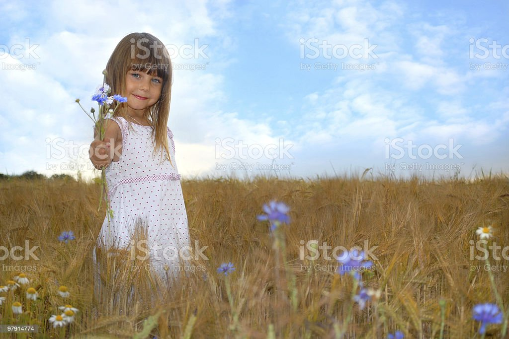 Giving you are bouquet of wildflowers royalty-free stock photo