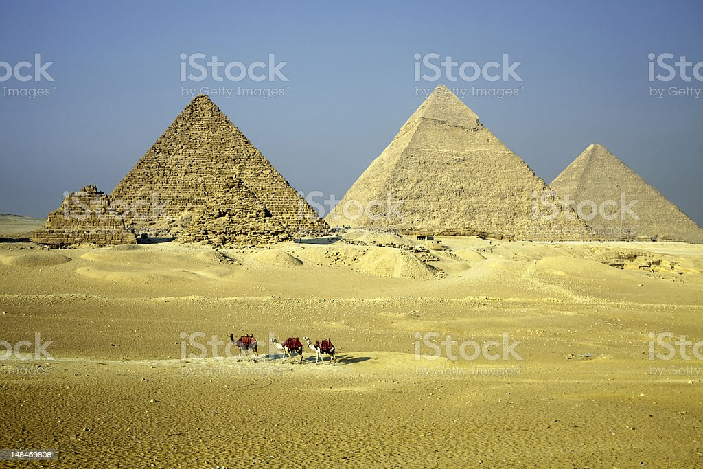 Giza Pyramids with Camels royalty-free stock photo