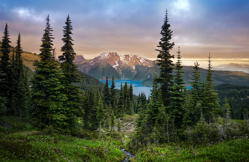 View of a mountain lake between fir trees. Mountain peaks above the lake lit by sunset rays. Canada