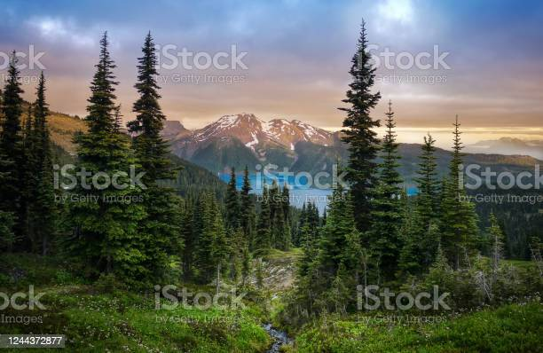Photo of Glacial mountain Garibaldi lake with turquoise water in the middle of coniferous forest at sunset.