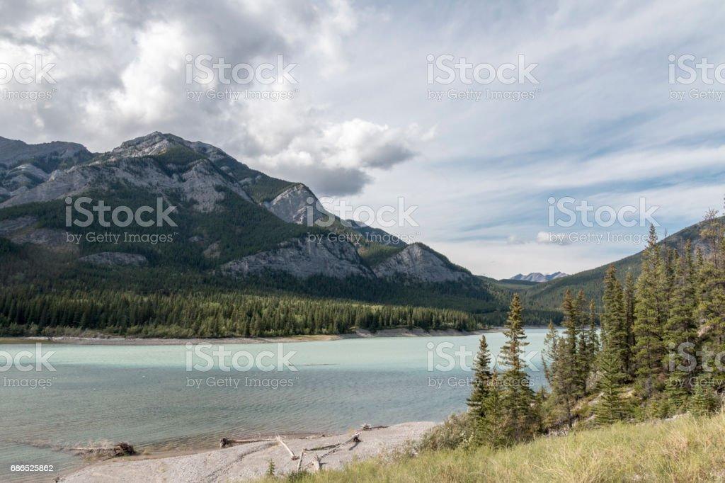 Glaciala vattenflödet royaltyfri bildbanksbilder