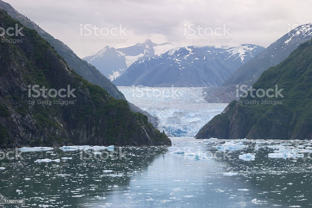Glacier and Icebergs in Early Morning, Tracy Arm, Alaska stock photo
