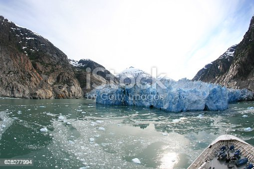 istock Glacier Bay, Alaska, USA 628277994