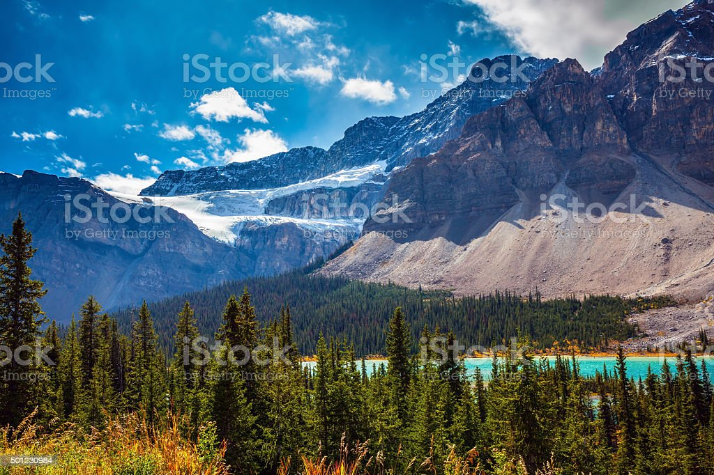 Glacier Crowfoot in striped mountains stock photo