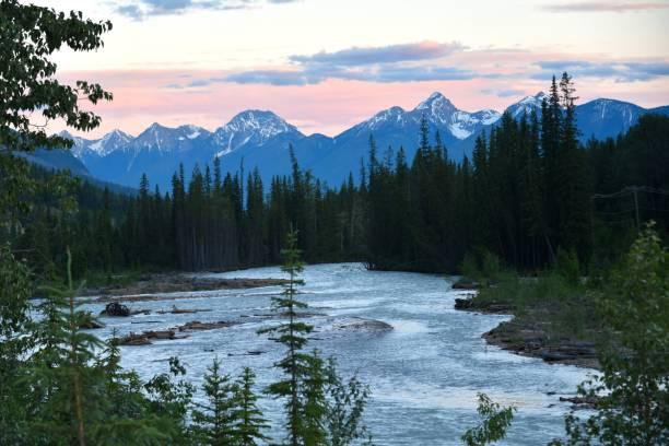 glacier national park, canada - british columbia glacier national park stock pictures, royalty-free photos & images