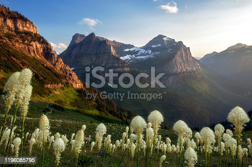 The golden hour bathes all in delicate light along this beautiful stretch of the Highline Trail near Logan Pass in Glacier National Park, Montana