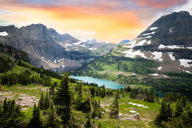 glacier national park, montana, usa - us glacier national park stock pictures, royalty-free photos & images