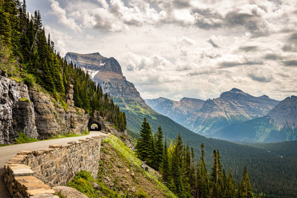 glacier national park - going to the sun road stock pictures, royalty-free photos & images