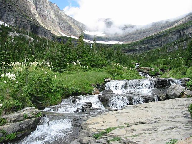 glacier national park - british columbia glacier national park stock pictures, royalty-free photos & images