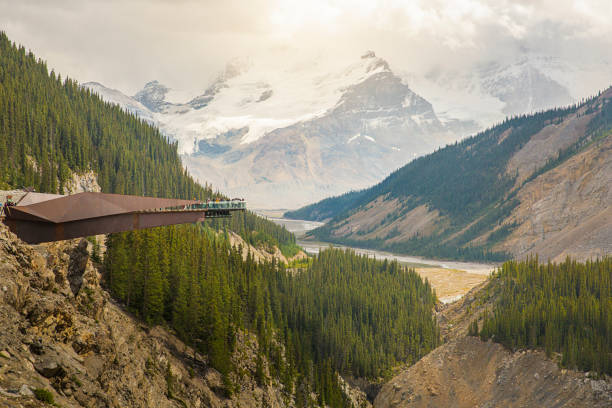 Glacier Skywalk during summer in Jasper National Park Tourists at the Glacier Skywalk during summer in Jasper National Park, Canadian Rockies, Alberta, Canada. elevated walkway stock pictures, royalty-free photos & images