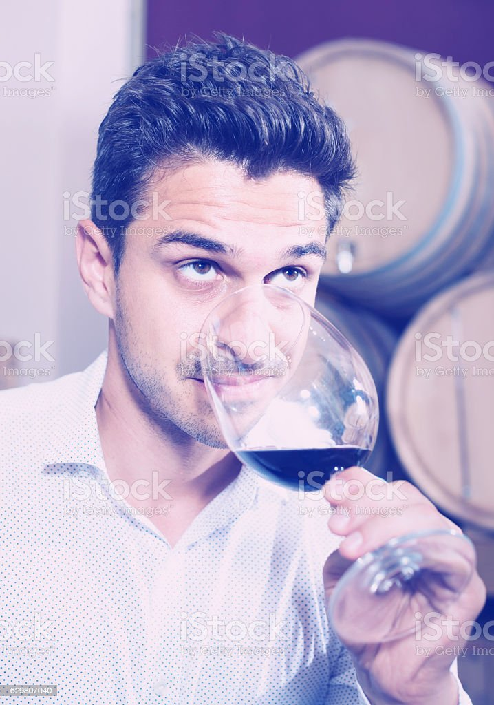 Glad man holding glass of red wine in winery section stock photo