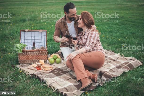 Glad Married Couple Having Picnic On Holiday In The Nature - Fotografias de stock e mais imagens de Abraçar