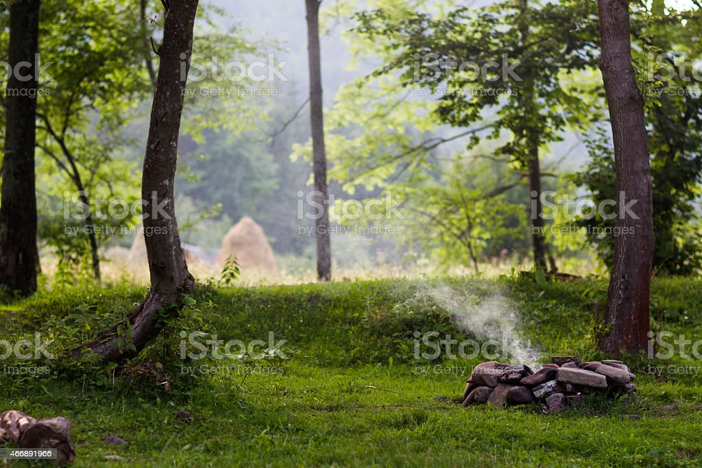 Glade in the forest with bonfire stock photo