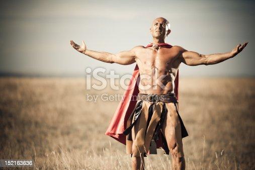istock Gladiator 152163636