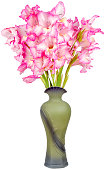 Still life of a bouquet of pink gladioli in a vintage elegant ceramic vase isolated on a white background close-up.