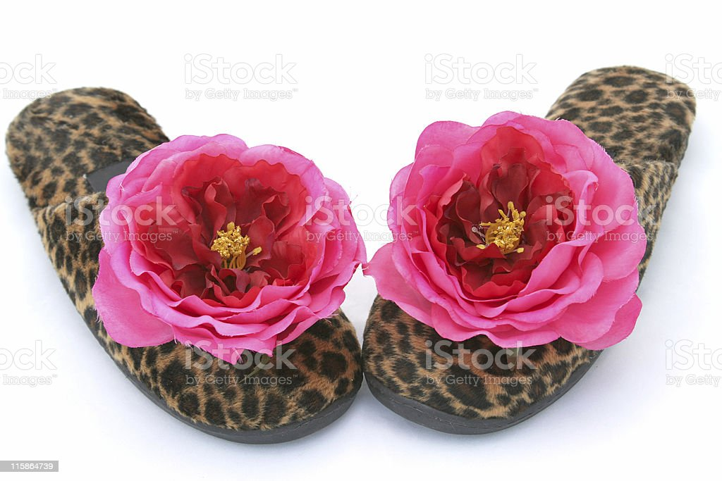 Glamorous Slippers Two royalty-free stock photo