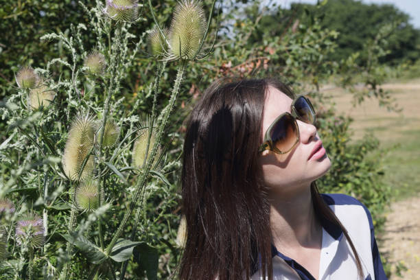 glamourous young bulgarian outdoor girl with teasel wildflower - whiteway english outdoor girl stock photos and pictures