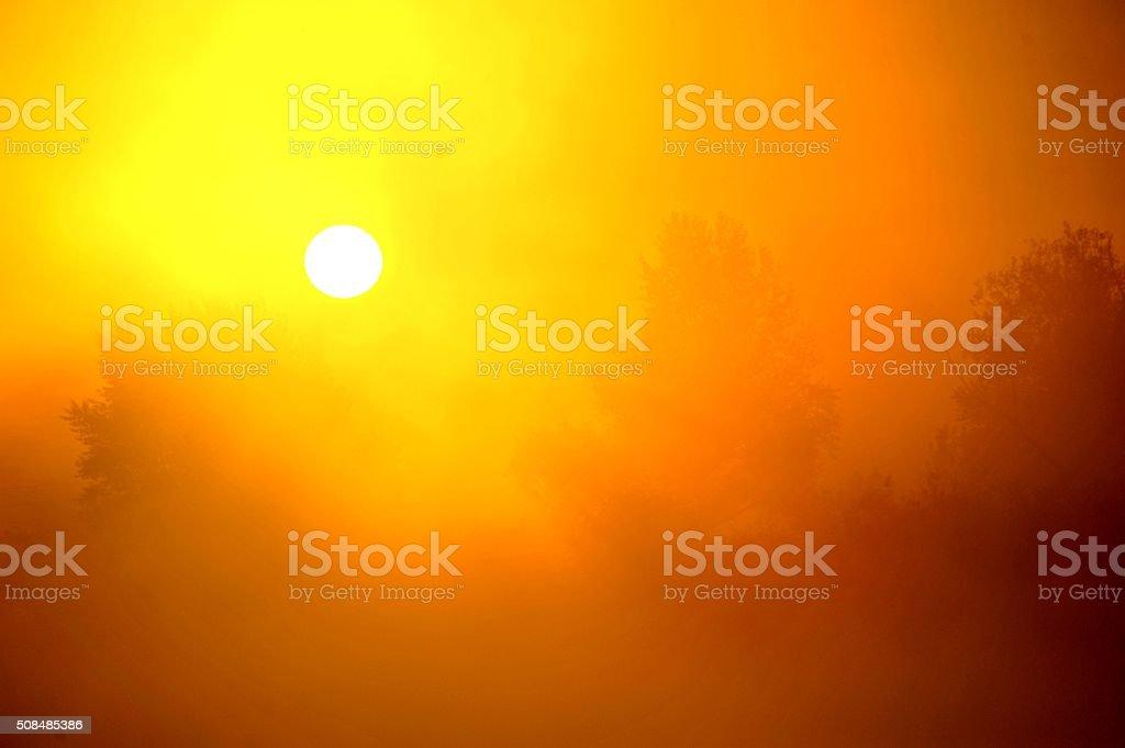 glare stok fotoğrafı