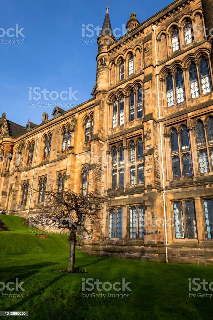 Universidad de Glasgow en un día soleado con un árbol fuera de - foto de stock