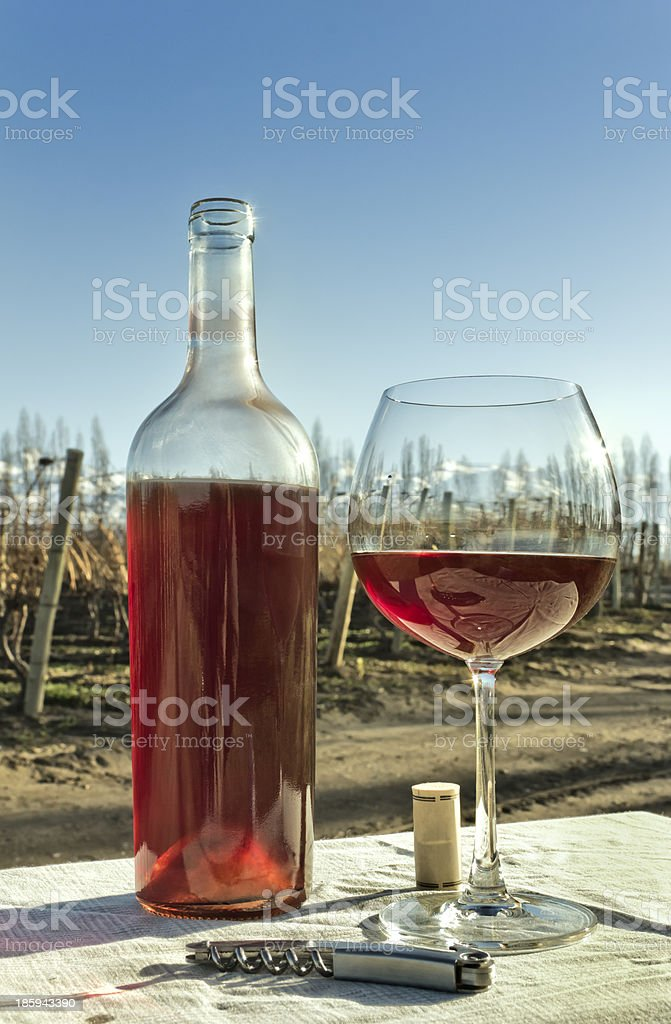 Glass and bottle of rosé wine royalty-free stock photo