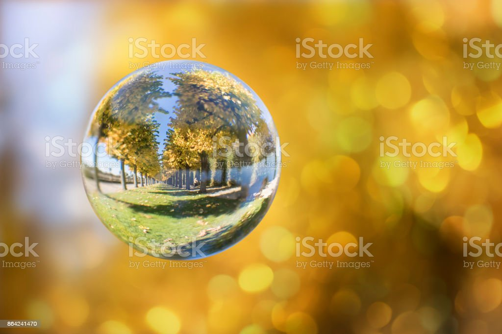 Glass ball with reflection of autumn yellow trees royalty-free stock photo