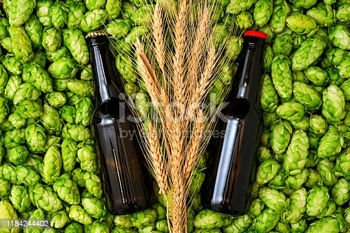 istock Glass bottles of beer, green cones of hops and wheat grain top view 1184244402