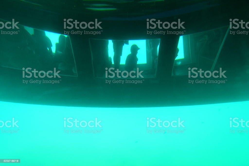 Glass bottomed catamaran below the water stock photo