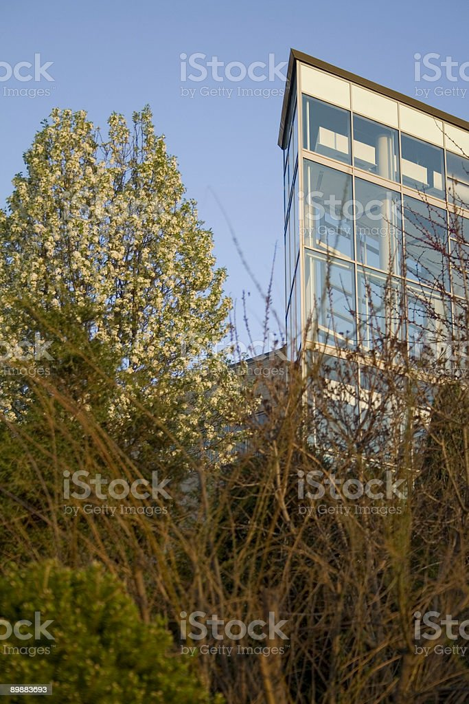 Glass Building, Landscaping royalty-free stock photo