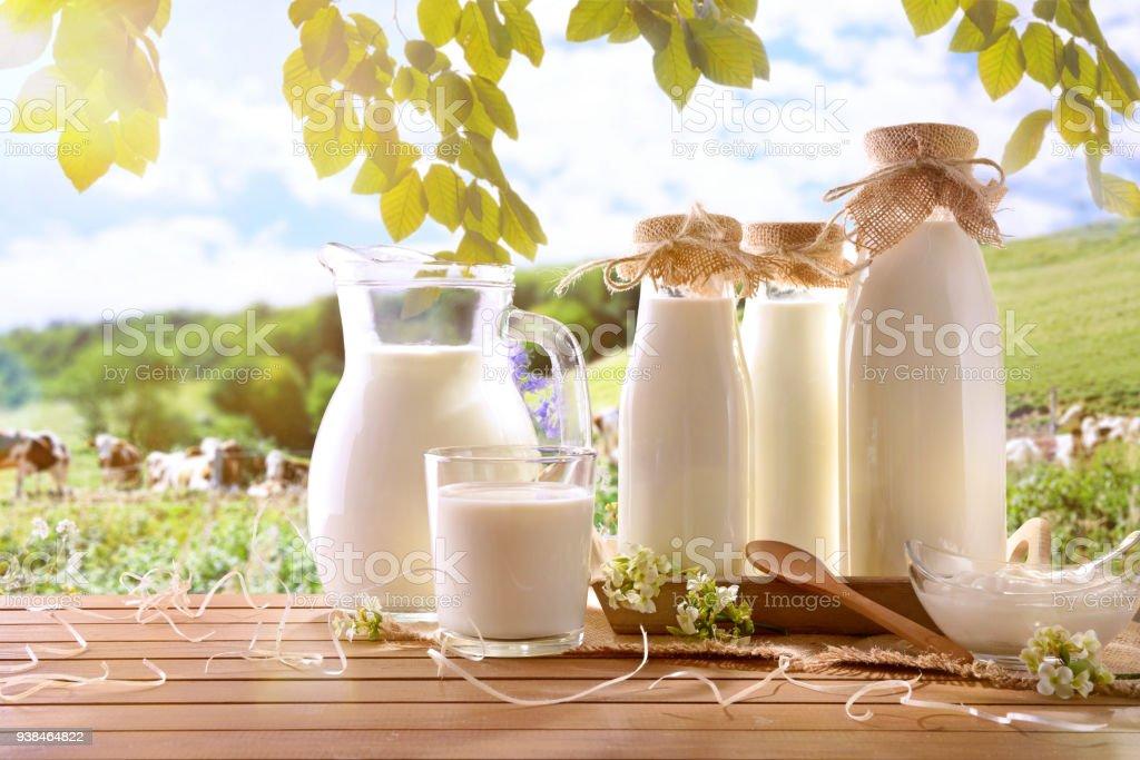 Envases de vidrio llenan de leche de vaca en un prado - foto de stock