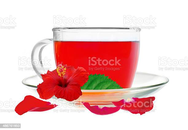 Glass cup hibiscus tea with hibiscus flower and petals isolated picture id486761853?b=1&k=6&m=486761853&s=612x612&h=  nyqgryjoasvbnrpizoj53 x7z6cx2kmxrijormxic=