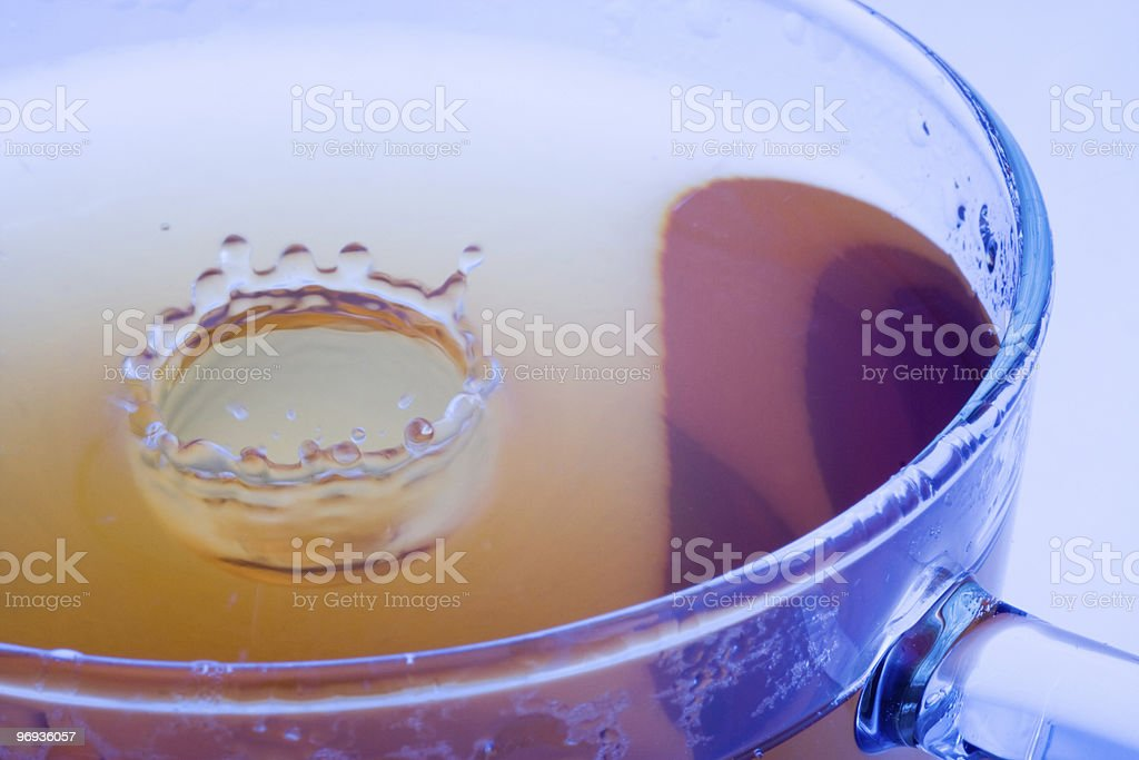 Glass cup of tea royalty-free stock photo