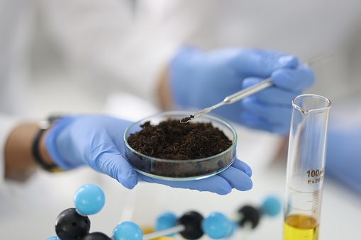 Glass cup with soil sample stands on hand in rubber glove in chemical laboratory closeup