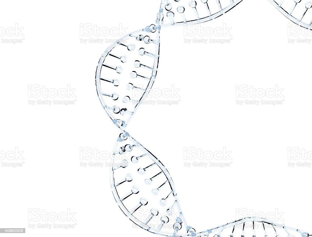 Del ADN de vidrio modelo foto de stock libre de derechos