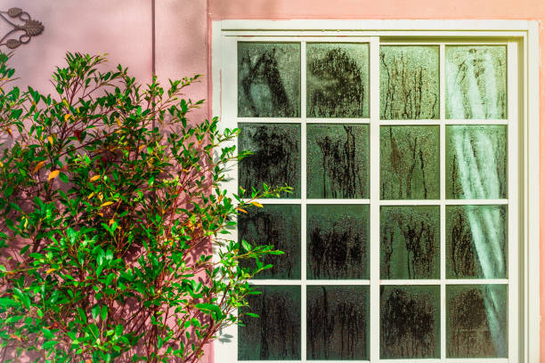 glazen deur met condensatie, een boom en een hoge luchtvochtigheid. het patroon van het water op een glas. fenomeen van aard en exterieur concept. - luchtvochtigheid stockfoto's en -beelden