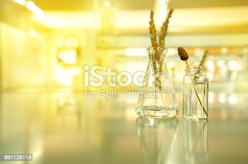 891126108istockphoto glass flask and vial with wheat and flower in agricultural biotechnology laboratory background 891126114