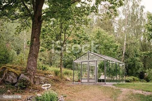 Glass greenhouse in garden Summer in garden lush green