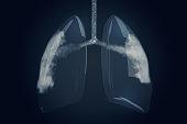 istock Glass Human Lubgs with Cigarette Smoke Inhale 1078101934
