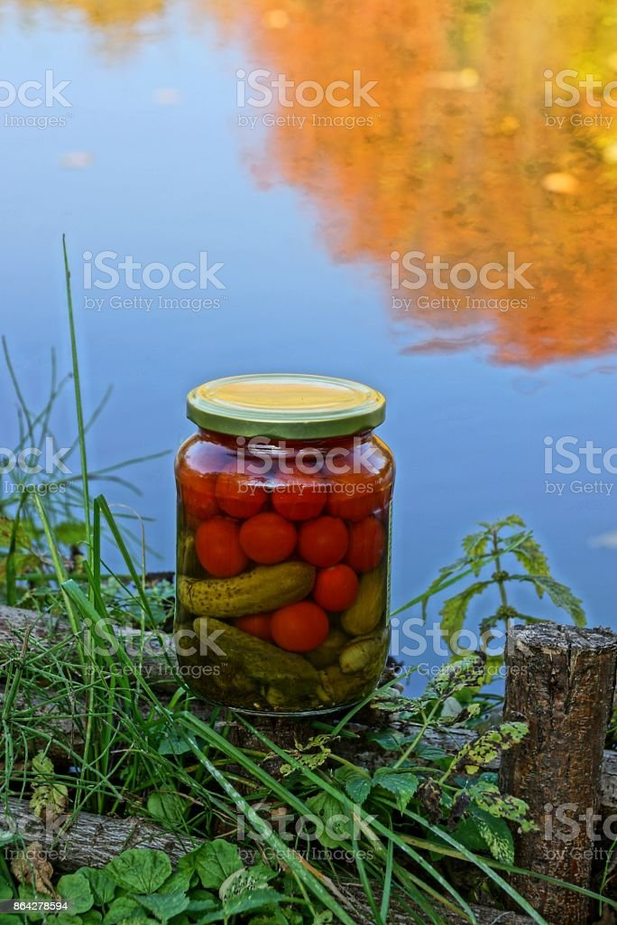 glass jar with vegetables on the lake shore in the grass royalty-free stock photo