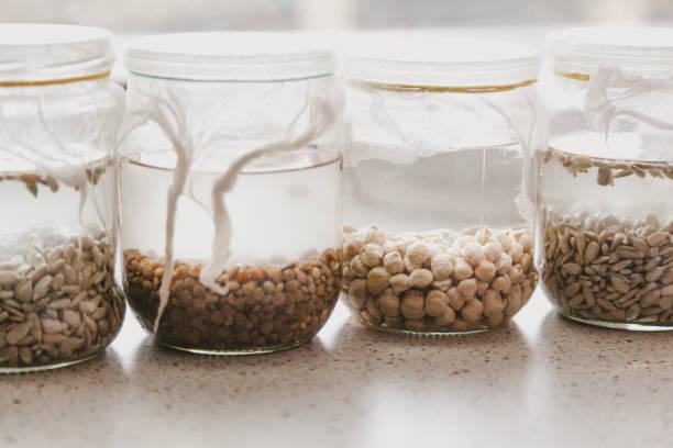 glasgläser mit verschiedenen getreidesorten - whisky test stock-fotos und bilder