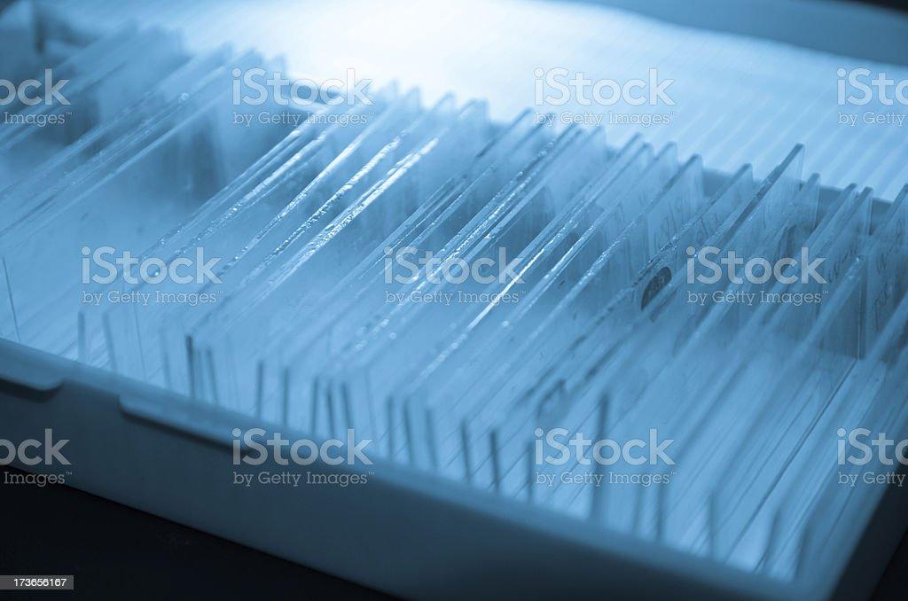 glass microscope slide stock photo