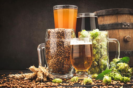 istock Glass of beer and its ingredients on table against blurred background 1173572937