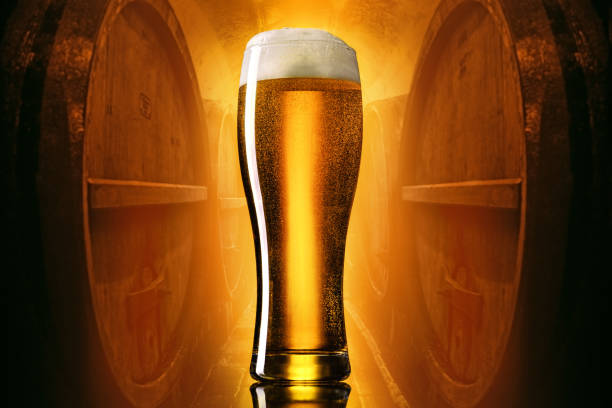 Glass of beer Craft light lager beer in a pilsner glass on yellow to brown gradient with beer barrels background. pilsner stock pictures, royalty-free photos & images