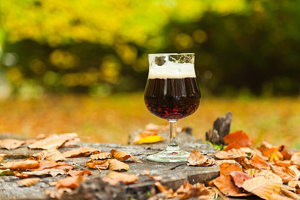 Glass of beer standing on tree trunk in autumn forest. stock photo