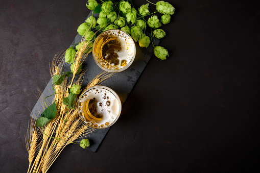 istock Glass of beer with green hops and wheat ears on dark wooden table. Still life. Top view 1035683532