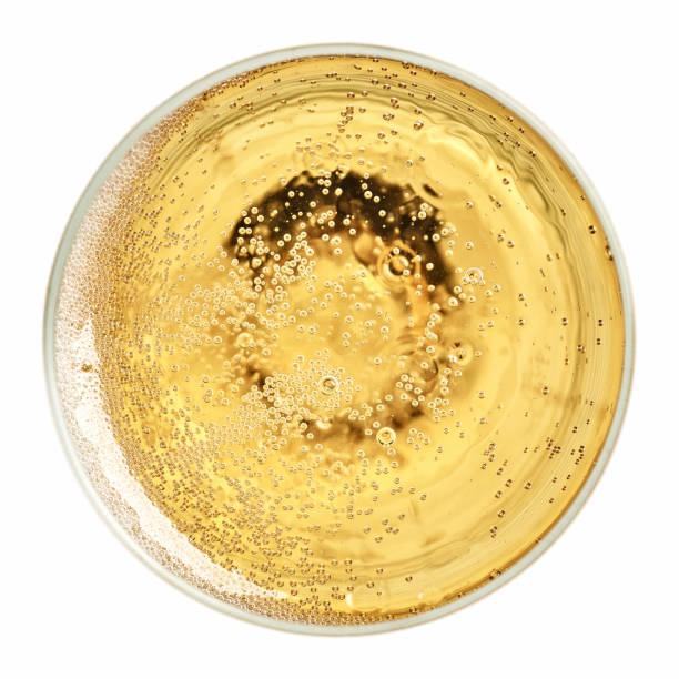 ein glas champagner  - sektglas stock-fotos und bilder