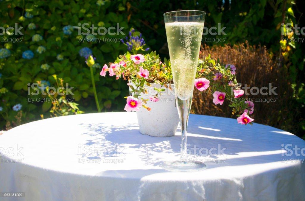 Glass of Champagne - Zbiór zdjęć royalty-free (Alkohol - napój)
